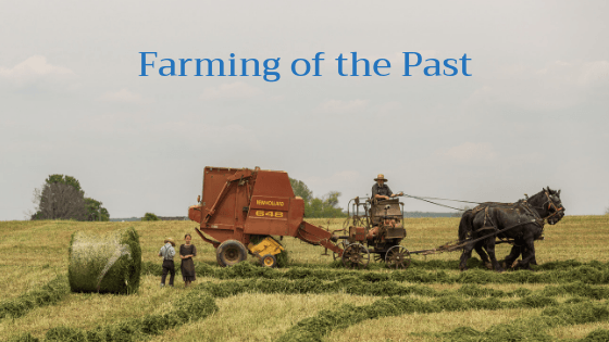 A Look Back at Agriculture ~ Farming in the Mid-1800's