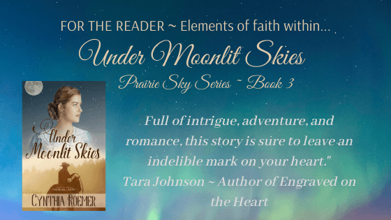 For The Reader ~ Under Moonlit Skies
